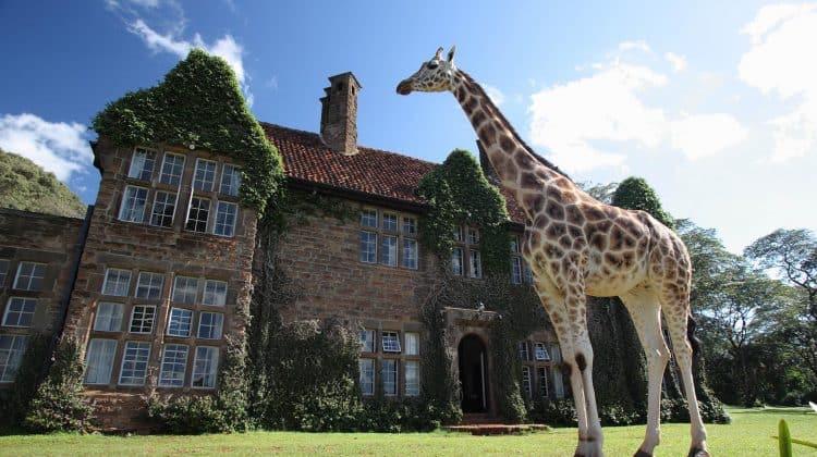Girafe Manor exterior 750x420