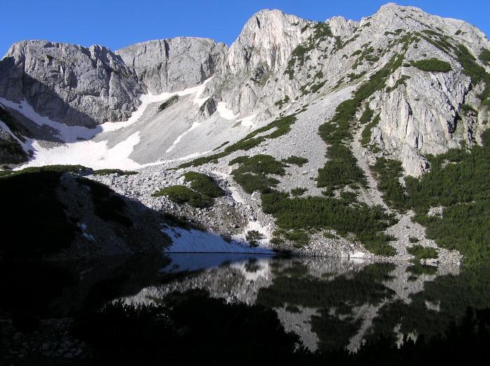 момин връх