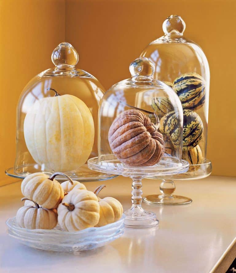 54eaa0ad41087_ _clx pumpkin decorating ideas elegant pumpkin w3qhbm display