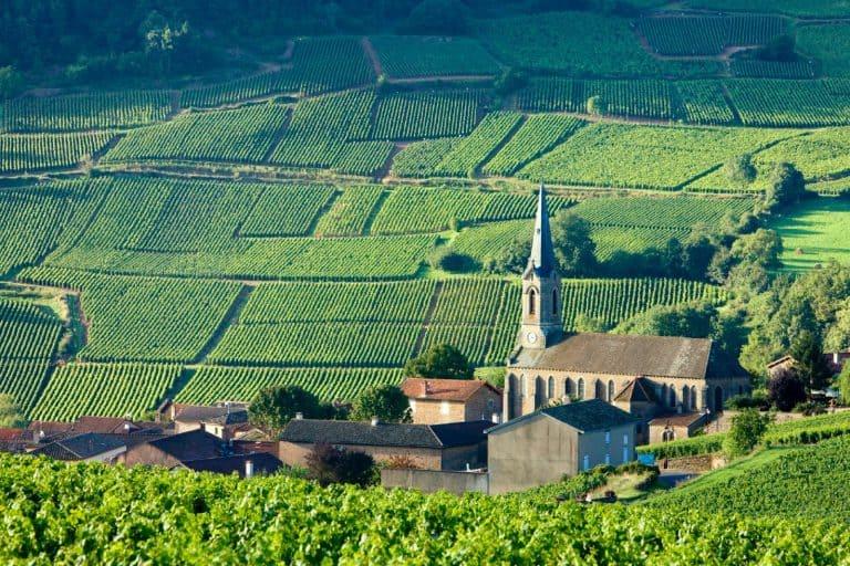 Burgundy France 1 768x512