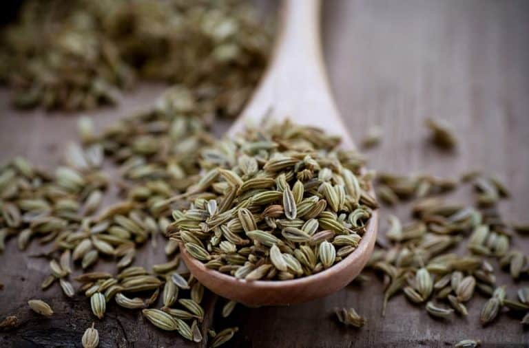 Fennel seeds whole 1024x675 768x506