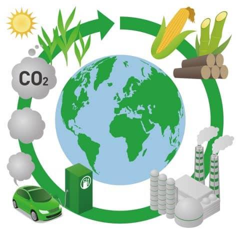 biofuels 480x480