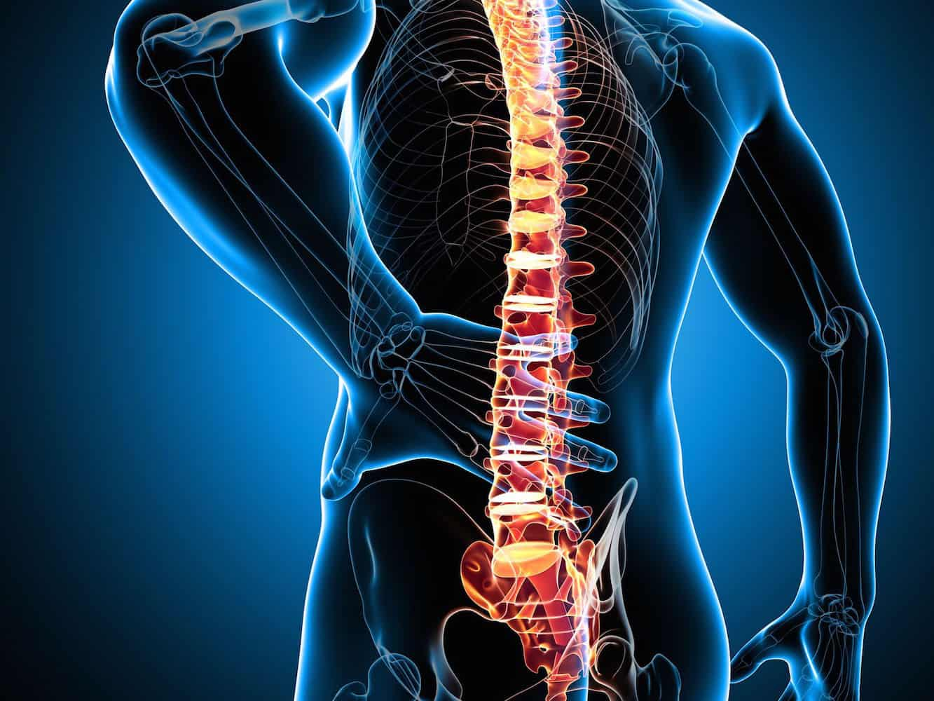 гръбначен стълб