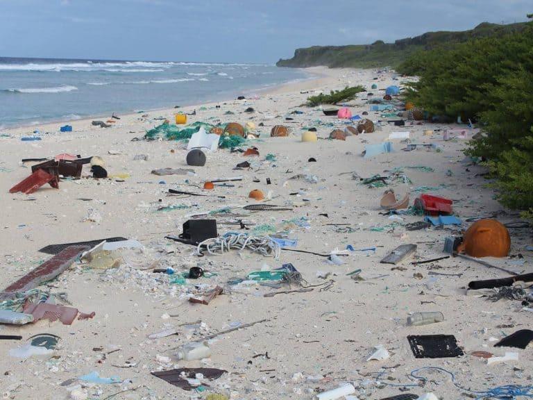 plastic waste 10 768x576