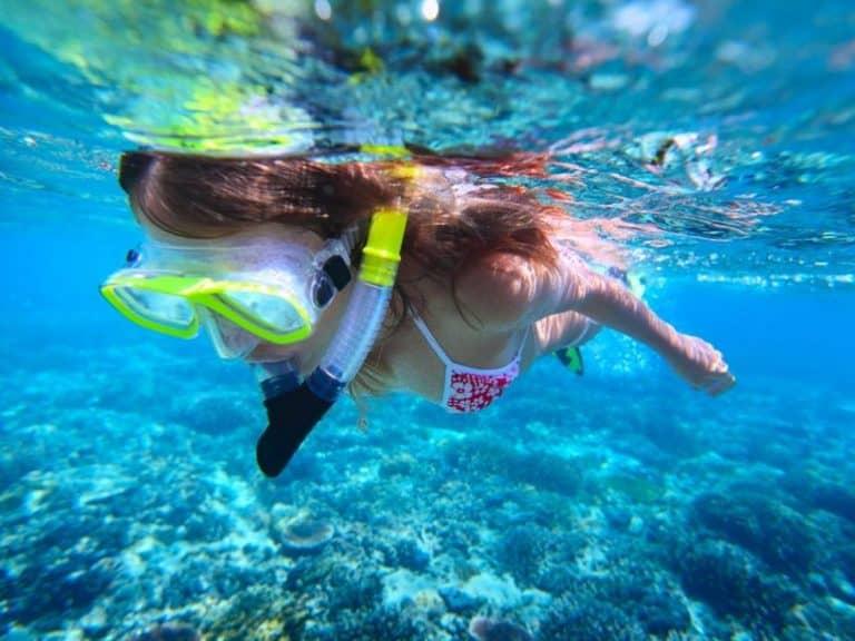 snorkel_0 768x576