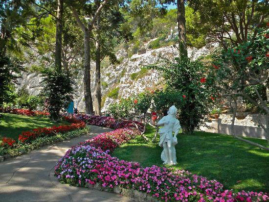 Augustus Gardens 03