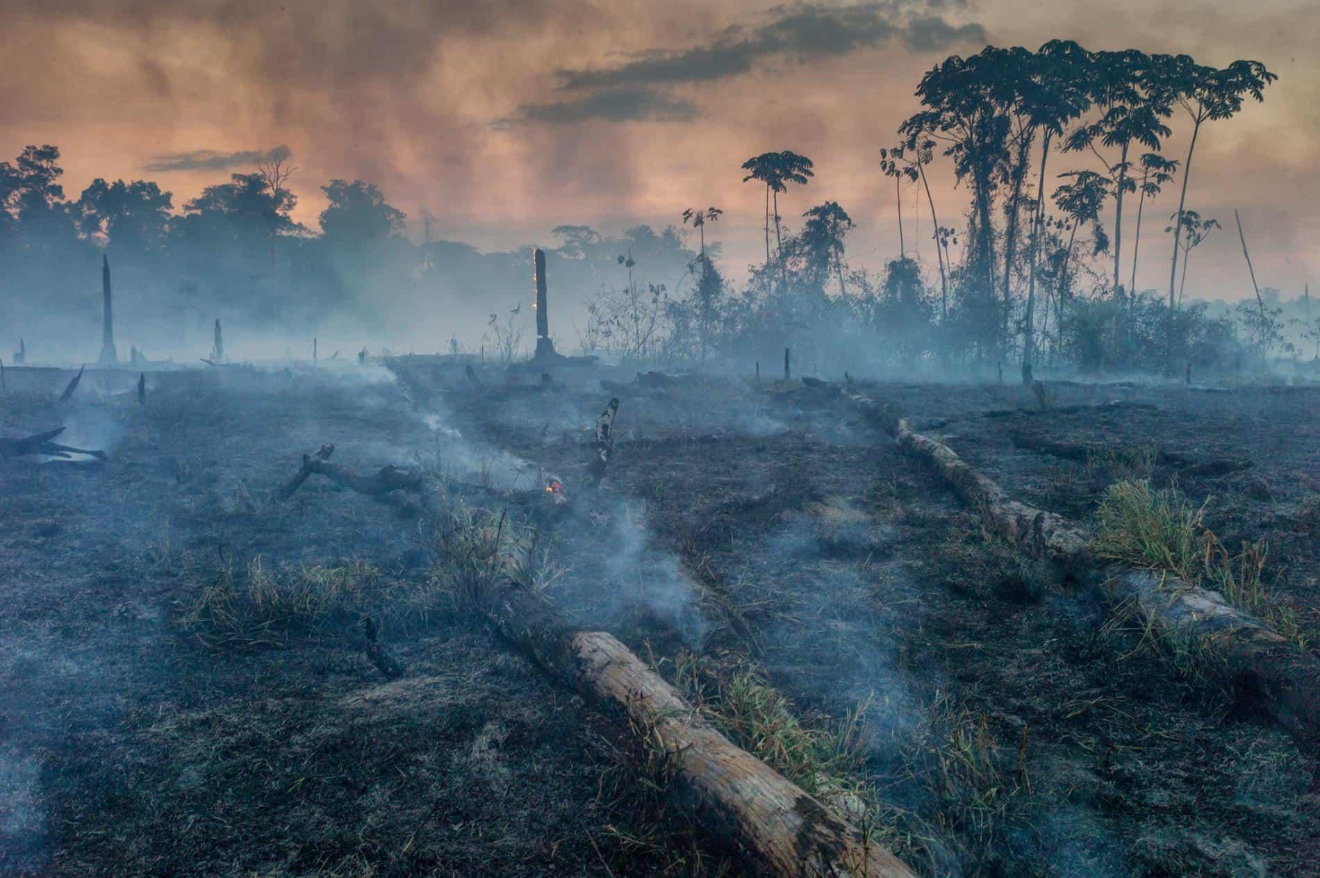 amazon fires slash burn western amazon 13 adapt 1900 1