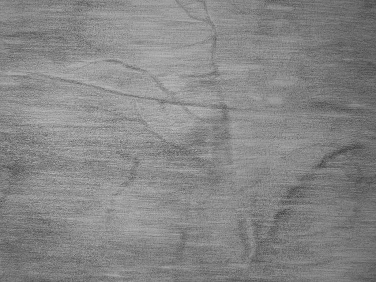 Stella Vassileva izlozhba v Arosita 2019 750x563