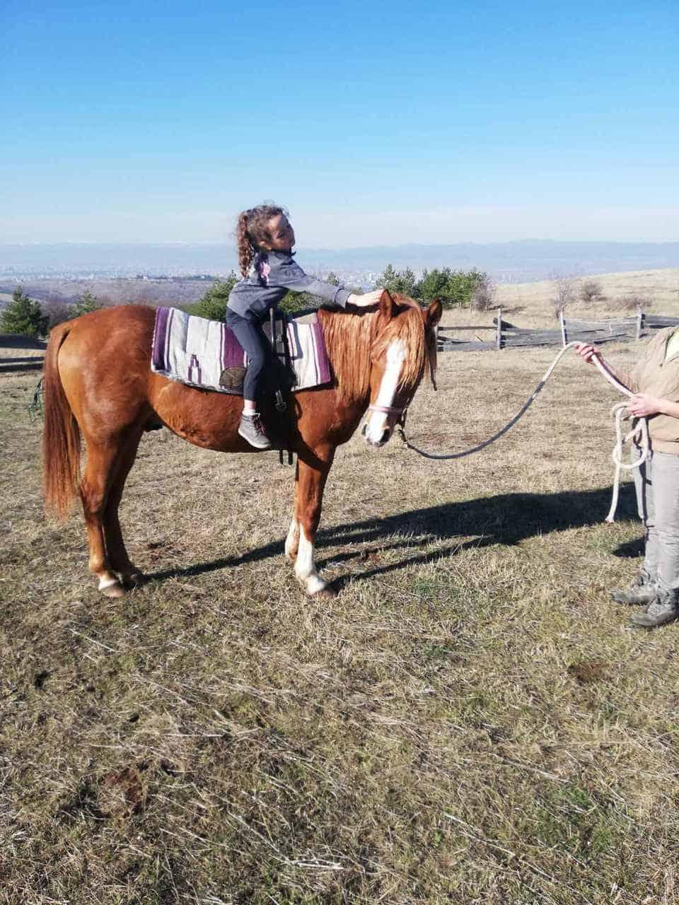 терапия с коне 5