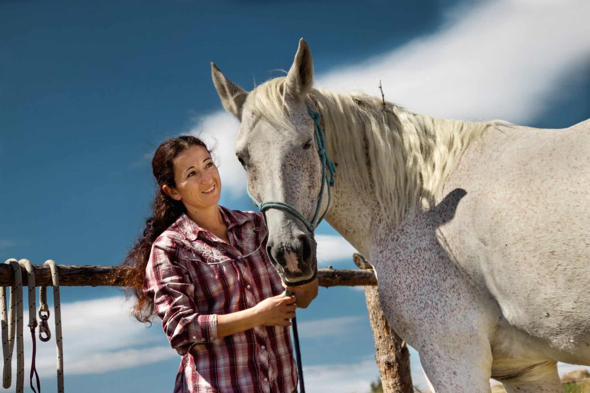 терапия с коне 8
