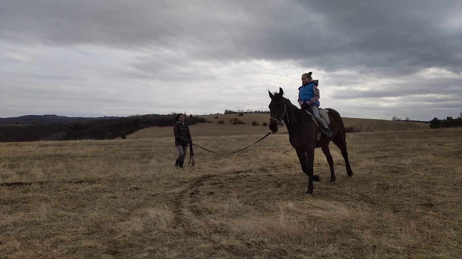 терапия с коне
