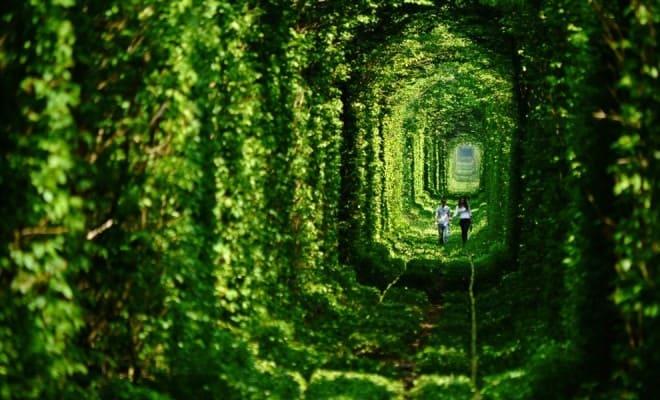 Fairy Tale Tunnel of Love Found in Klevan Ukraine 1 660x400