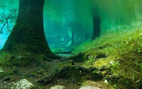 зеленото езеро 3
