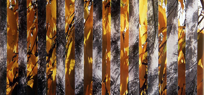 Пламена Рачева През щорите Топлината на цвета обгръща монохромието 00001 1170x545