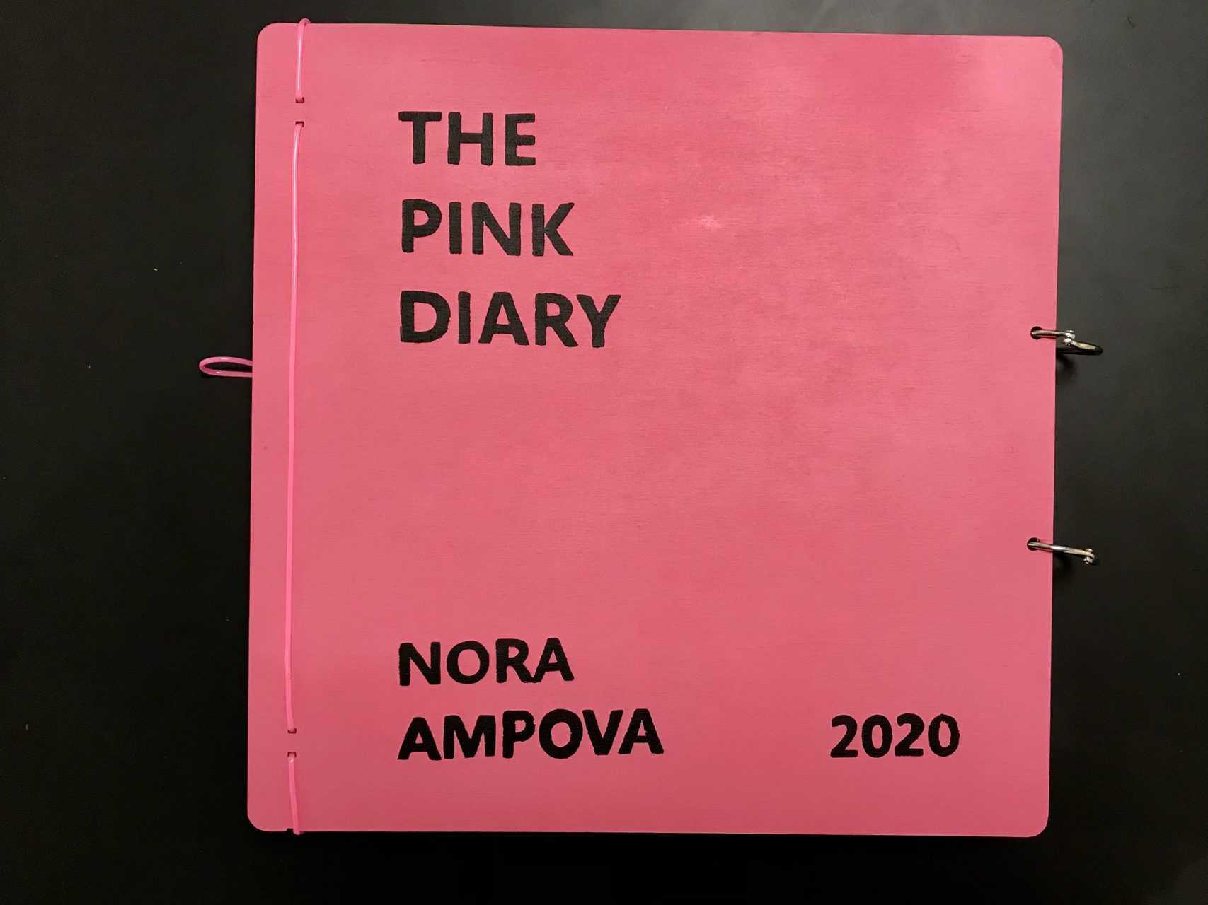 розав дневник   Нора Ампова