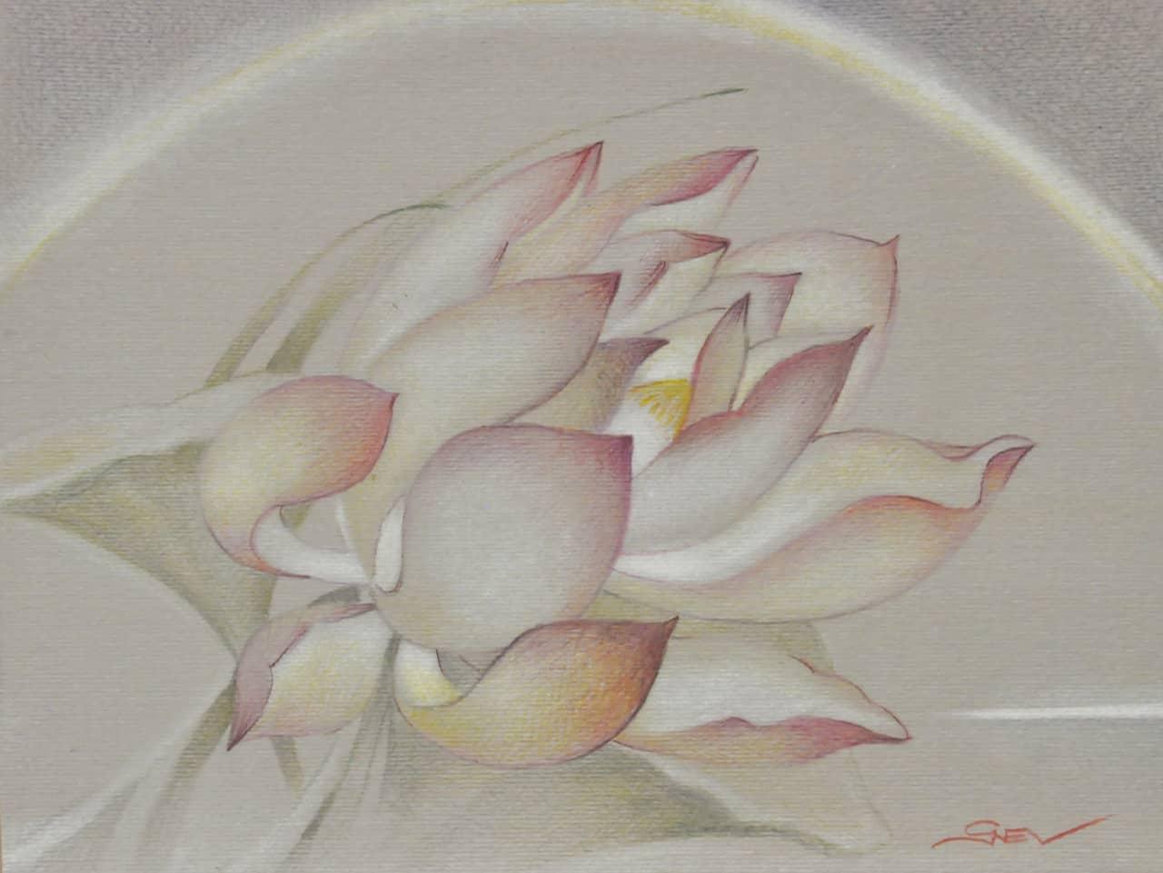 lotus from the garden  1_17х24см
