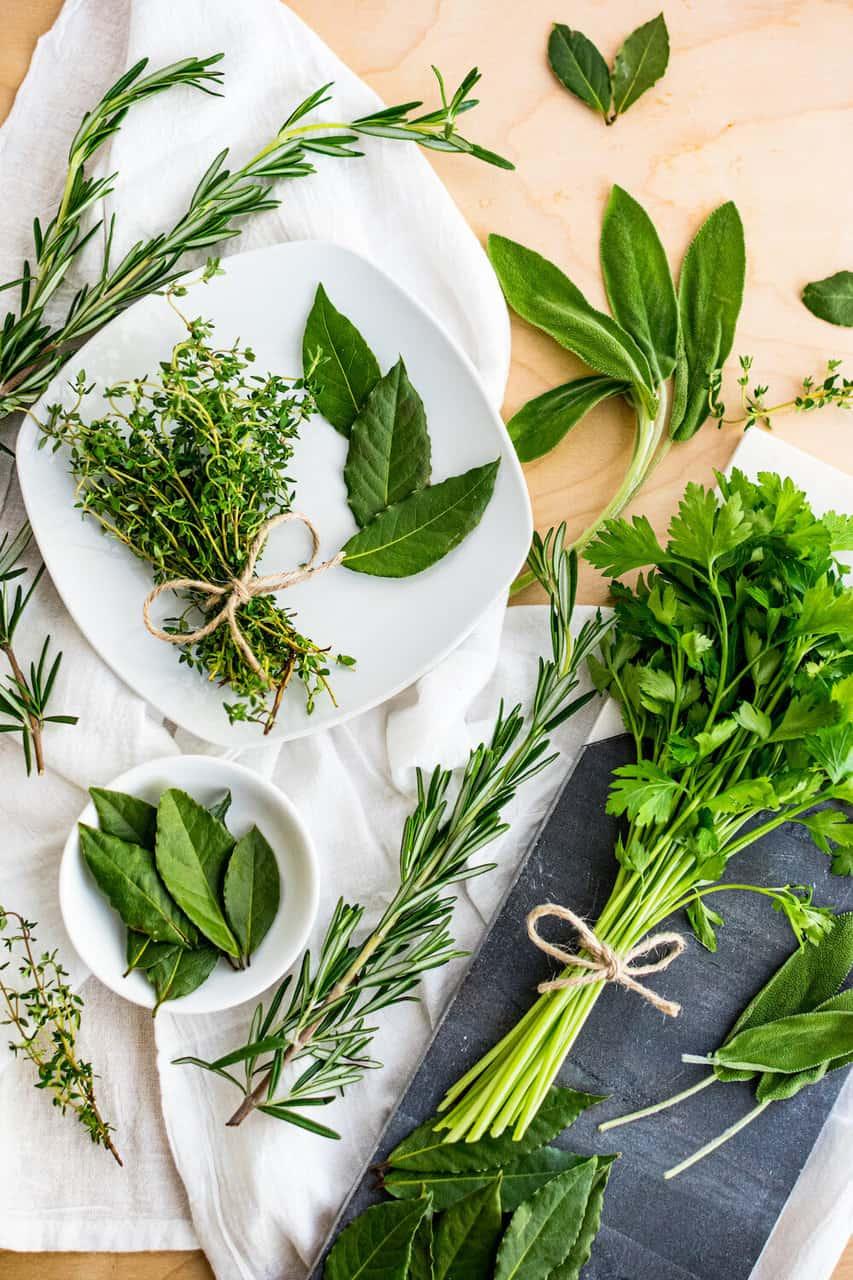 Summer+Herbs 1
